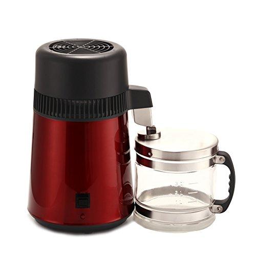4L elctrica Dental/Travel/Home Agua Grabadora zinntheken Acero Inoxidable Agua purifire aceite esencial de Destilacin W/Botella de cristal borgoa