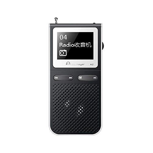 AWJ Altoparlante USB Altoparlante Lond Lettore MP3 con Altoparlanti integrati può riprodurre 100 Ore MP 3 Lettore Portatile con Radio FM MP-3 Walkman