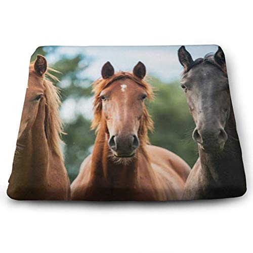 Soft Square Seat Cushion- Comfortable Memory Foam Chair Mat Pads for Home/Dining/Office/Living/Room/Floors- 15'' x 13.7'- Three Horses Black