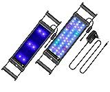 BELLALICHT Rampe LED pour Aquarium Éclairage Aquarium LED 7.5W 3 Mode Luminosité Ajustable RGBW Lumieres Lampe LED pour 30-45CM Aquarium avec Timing - 7500K