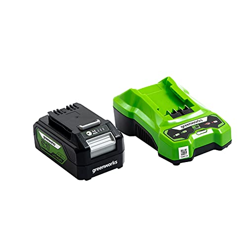 Greenworks Battery G24B4 and Charger G24UC (Li-Ion 24V 4Ah 60W Output 120 Minutes Charging Time for 4Ah Appropriate for All Devices from the 24V Greenworks Line)