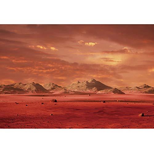 BT-woestijn, YWFNBK25747, 1,5x1m