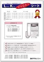 LKすっきりシート(NTT αRXⅡ/IXⅡ用 100台分)LS-NT01-100