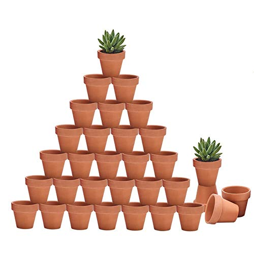 Riseuvo 32pcs Small Mini Clay Pots - 2'' Terracotta Pot Clay Ceramic Pottery Planter, Cactus Flower Terra Cotta Pots, Succulent Nursery Pots, with Drainage Hole, for Indoor/Outdoor Plants, Crafts