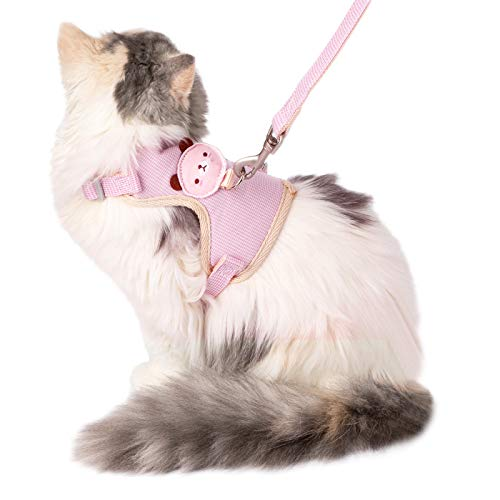 Best Cat Harness for Walking Escape Proofs