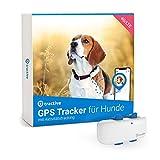 Tractive GPS tracker für Hunde (2021) Empfohlen von Martin Rütter - mit Aktivitätstracking und unbegrenzter Reichweite, wasserfest