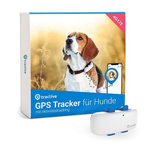 Tractive GPS DOG 4 - Empfohlen von Martin Rütter. Tractive GPS Tracker für Hunde mit Aktivitätstracking und unbegrenzter Reichweite, wasserfest (neuestes Modell)