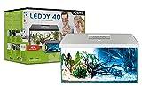 Aquael 122729 Leddy Plus RE 40 D&N - Set de acuarios (5400 g), Color Blanco