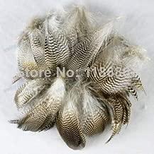 Best mallard duck feathers for sale Reviews