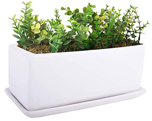 VanEnjoy - Maceta rectangular de cerámica para suculentas (25,4 cm), color blanco