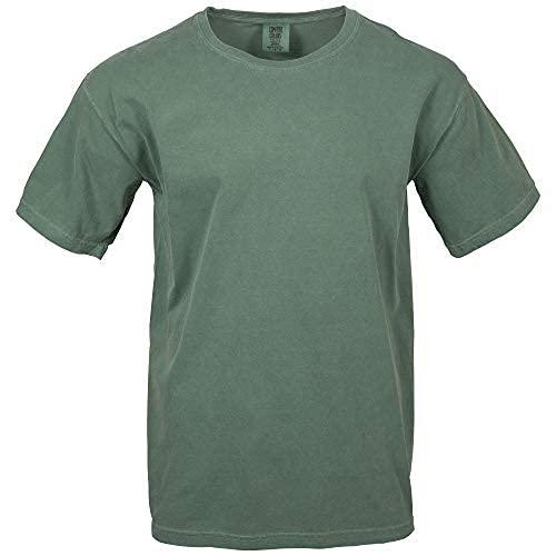 Comfort Colors Men's Adult Short Sleeve Tee, Style 1717, Light Green, Medium