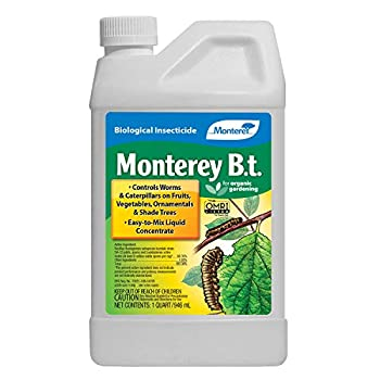 Best bt spray Reviews