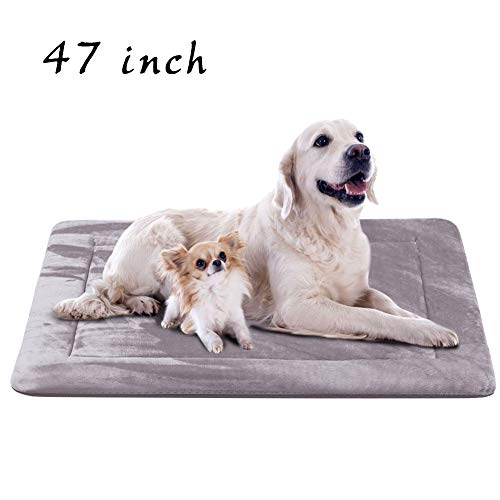Extra Large Dog Bed Crate Pad