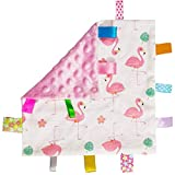 Soft Baby Security Blankets for Girls with Textured Ribbon Tags Baby Soothing Towel Lovey Taggy Sensory Toys for Newborn Infant Toddler Gift