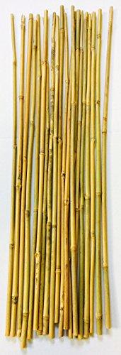 Mendi 50 Varillas de bambú / 70 cm a 75 cm/Entre 6 mm y 10 mm/Tutor de Plantas, jardineria y Huerta