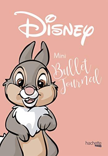 Mini bullet Journal Disney