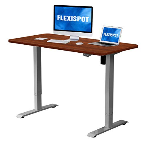 Flexispot Electric Height Adjustable Desk Sit Stand Desk, 48 x 30 Inches, Whole-Piece Desk Board Home Office Table Stand up Desk(Gray Frame + 48 in Mahogany Top)