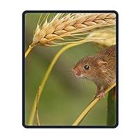 動物のマウスマウスパッドの性格設計ゲーミングマウスパッドスタイル