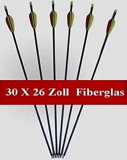 Poids 34 grammes par pi/èce Pointe M/étallique Viss/é 12 Fl/èches Longueur 30 = 79,3cm Aluminium