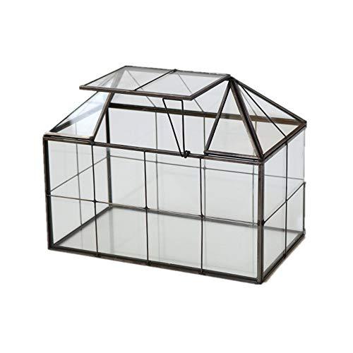 Humeng Terrario Plantas Geometría Poliédrico Cubo De Cristal Transparente de fabricación...