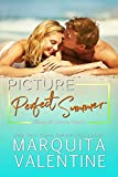 Picture Perfect Summer (Kings of Castle Beach Book 3) (English Edition)