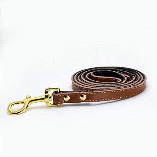 Mcdobexy Classic weich gepolsterte Hundeleine aus Leder für Katzen, kleine und mittelgroße Hunde