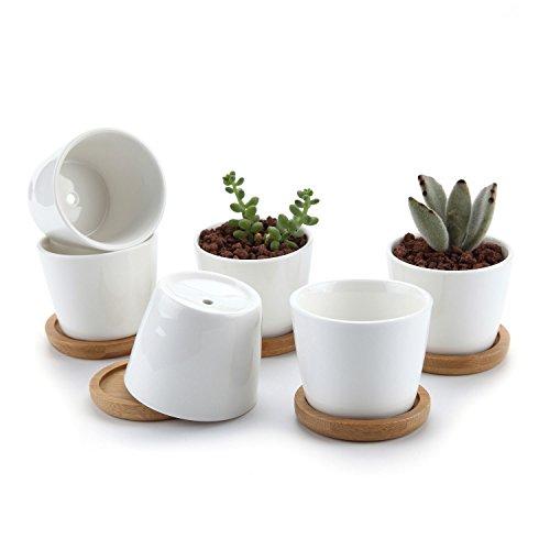 T4U Conjunto de 6 Ceramica Blanca Plaza Diseño Simple Cerámicos Planta Maceta Suculento Cactus Planta Maceta Planta Contenedor Vivero Maceta Macetas de jardín Macetas Envase