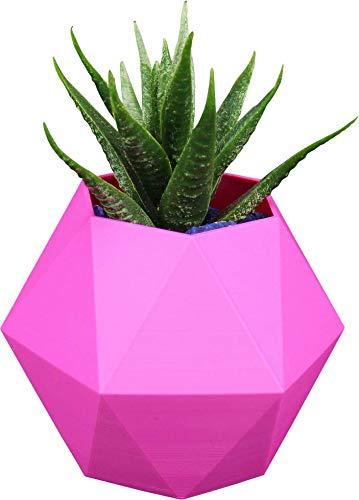 NetClient maceta decorativa moderna para flores, maceta única de plástico, maceta bonita para plantas (Hexagon M, Rosa)