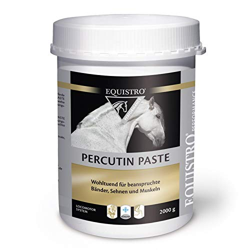 Vetoquinol Equistro Percutin Paste 2 kg