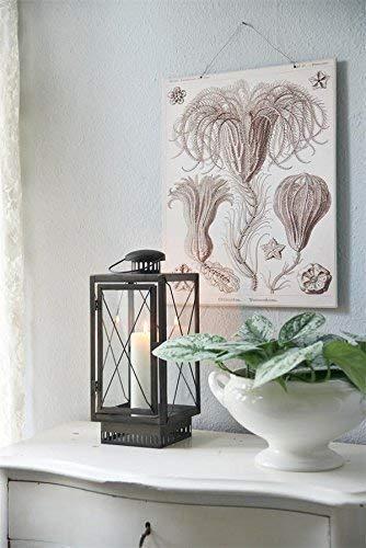 Jeanne d'ARC LIVING vintage lanterne Lampe-tempête shabby métal NOSTALGIE brocante