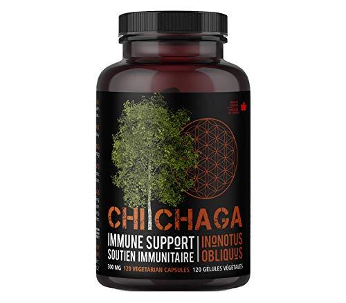 Suplemento de Hongo Chaga en cápsulas para reforzar la salud inmunológica - 120 cápsulas vegetarianas