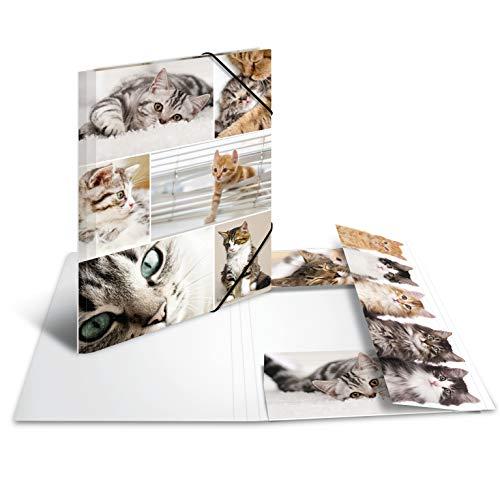 HERMA 19212 Sammelmappe DIN A4 Tiere Katzen aus stabilem Karton mit bedruckten Innenklappen, Gummizugmappe, Eckspanner-Mappe, 1 Zeichenmappe für Kinder