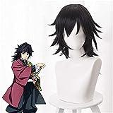 悪魔のスレイヤーキ・八谷智岡義正コスプレウィッグブラックポニーテールコスプレ衣装男性女性合成ヘアアニメのかつら