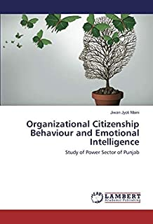 Organizational Citizenship Behaviour and Emotional Intelligence: Study of Power Sector of Punjab