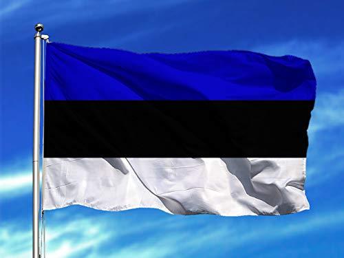 Oedim Bandera de Estonia 85x1,50cm | Reforzada y con Pespuntes | Bandera con 2 Ojales Metálicos y Resistente al Agua