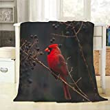 Mugod Red Bird Throw Blanket Northern Cardinal Bird on The Tree Branch Decorative Soft Warm Cozy Flannel Plush Throws Blankets for Bedding Sofa Couch 60 X 80 Inch
