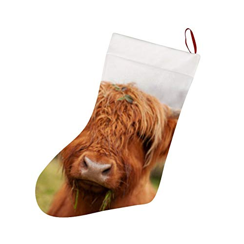Thewar Highland Cow Scotland Christmas Stockings Personalized Xmas Stockings Hanging Ornaments Candy Gift Bags for Family Holiday Xmas Party Decorations