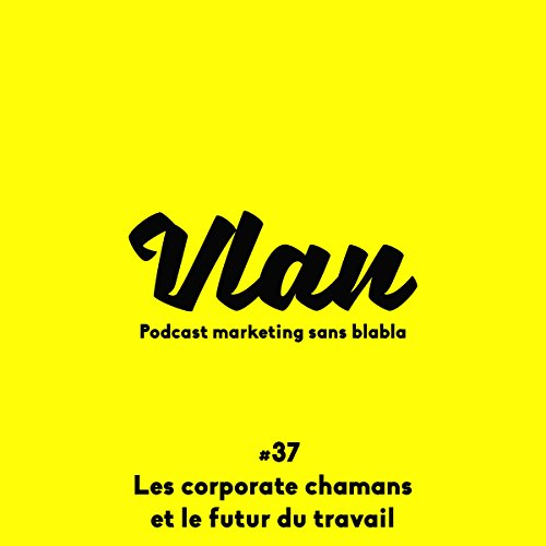 Couverture de Les chamans corporate