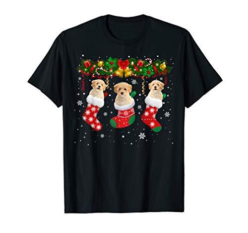 Poochon In Christmas Socks Cute Poochon Lover Xmas Gifts T-Shirt