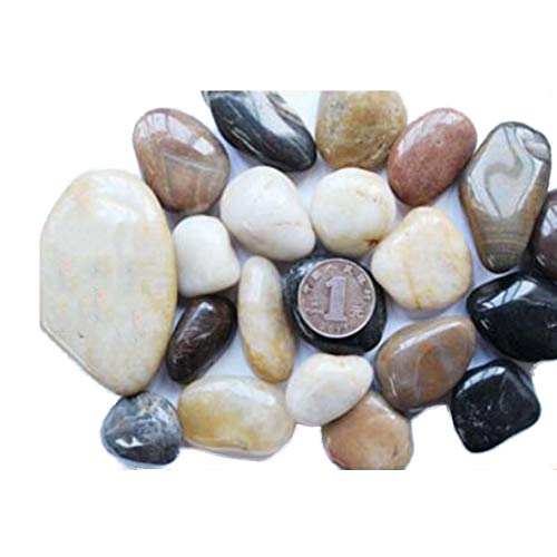 TELLW Super High-Throw Naturel Pebble Pierre Pierre en Pot décoratif Fish Tank Pierres Pierre Pierre Naturelle Petites Pierres, coloré, 500 g