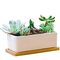 セラミック窓枠プランターボックス長方形植木鉢インテリア多肉植物の播種屋内多肉植物の播種サボテン、ハーブ、竹トレイ付きの家の卓上装飾