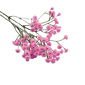 Silk Flower Arrangements Emptystar Artificial Flowers Real Looking Fake Baby's Breath Floral for DIY Wedding Bouquets Centerpieces Bridal Shower Party Home Decorations (Hot Pink)