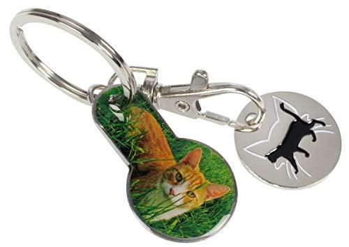 2-in-1 Einkaufswagen-Tool Katzen | Schlüsselanhänger mit abziehbarem Einkaufswagenchip und Einkaufschip | Katzenfreunde, Freizeit, Reise