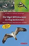 Die Vögel Mitteleuropas im Flug bestimmen: 468 Arten sicher erkennen und zuordnen