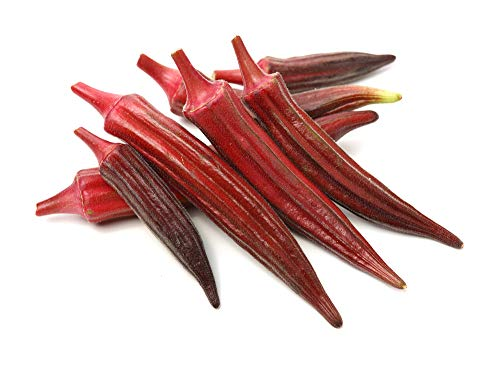 Red Burgundy Okra Seeds, 100 Heirloom Seeds Per Packet, Non GMO Seeds, Botanical...