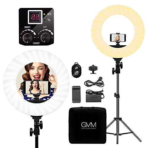 GVM LED Ring Light kit 14 inch, 256 Beads Eye Protection, Two-Color White/Yellow, with Bluetooth Receiver, Stand, Phone Holder, Power, Handbag,1 Year Warranty