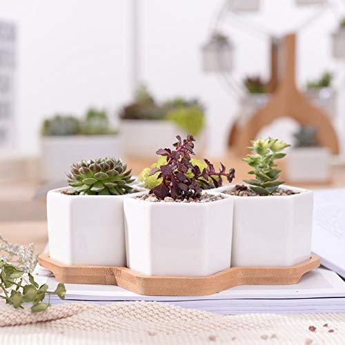 Rishx 4pcs Hexagone Blanc en céramique Pots de Fleurs en Pot avec Succulent Plant Bambou Petite Boutique Bonsai Pots Planters Green Home Décor Bureau décoratif Artisanat