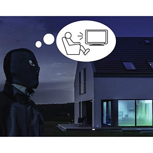 THOMSON ant1487Innen Antenne TV-Antennen TV (DVB-T, T2, Sektor, 1,9m, 250mm, 65mm, 135mm)