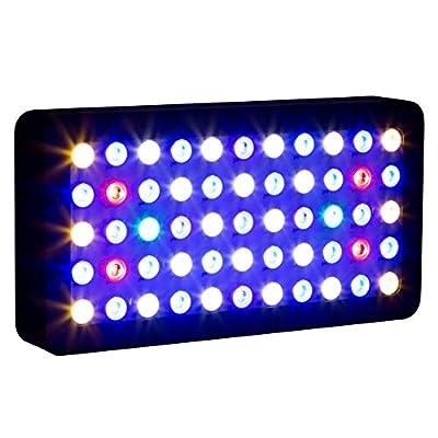 Aquarium LED Éclairage Control Contrôle WiFi Aquarium Marine Aquarium LED Lumière Aquarium Lampe Éclairage Marine Aquarium Lumière Récif Corail LED Lumière