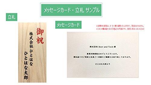 HitoHana『観葉植物カラテアマコヤナ6号エコストーンwhite付き』